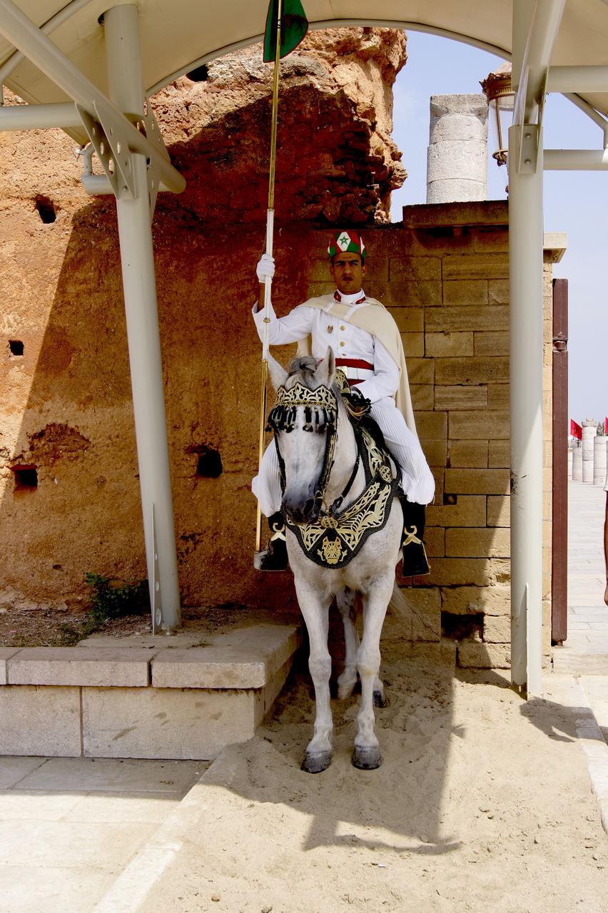 Rabat atrakcje