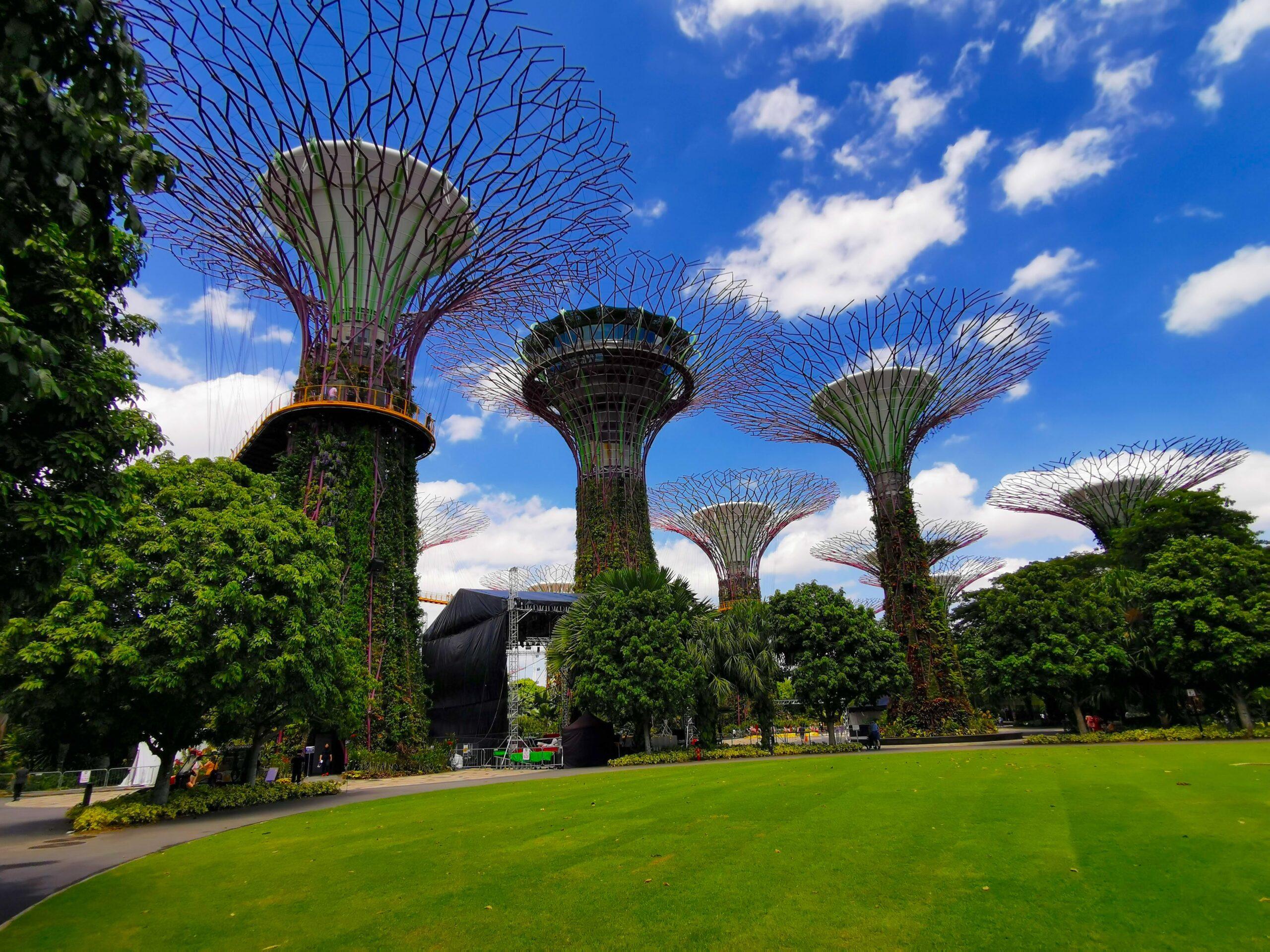 Gardens By the bay w Singapurze