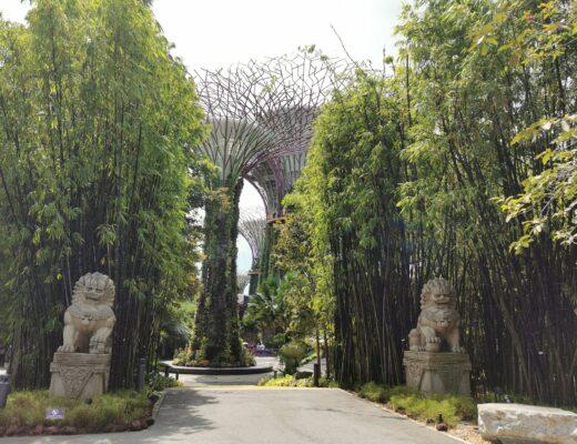 atrakcje Singapuru TOP darmowe miejsca